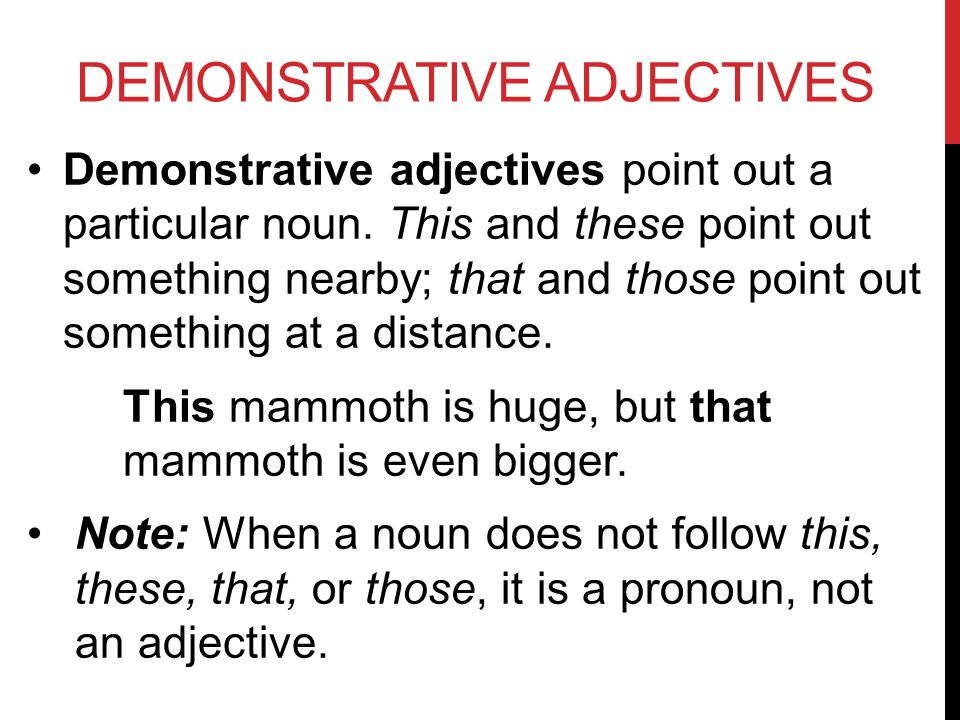 DEMONSTRATIVE ADJECTIVES Demonstrative adjectives point out a particular noun.
