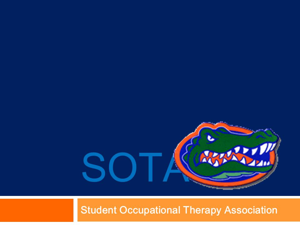 SOTA Student Occupational Therapy Association