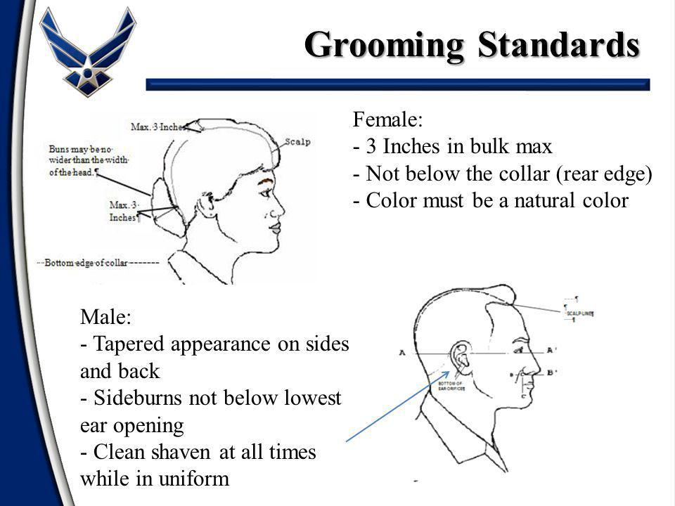 Grooming Standards Female: - 3 Inches in bulk max - Not below the collar (rear edge) - Color must be a natural color Male: - Tapered appearance on sides and back - Sideburns not below lowest ear opening - Clean shaven at all times while in uniform