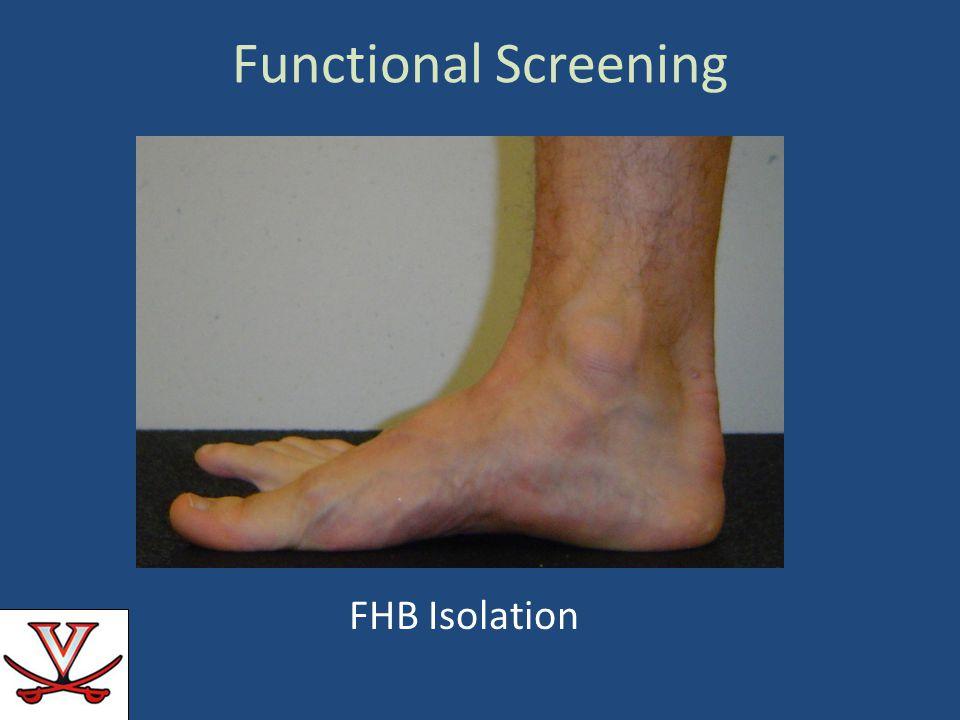 Functional Screening FHB Isolation