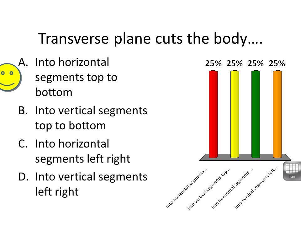 Transverse plane cuts the body…. A.Into horizontal segments top to bottom B.Into vertical segments top to bottom C.Into horizontal segments left right