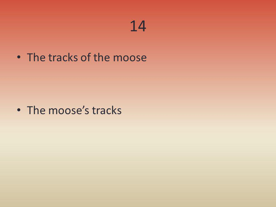14 The tracks of the moose The mooses tracks