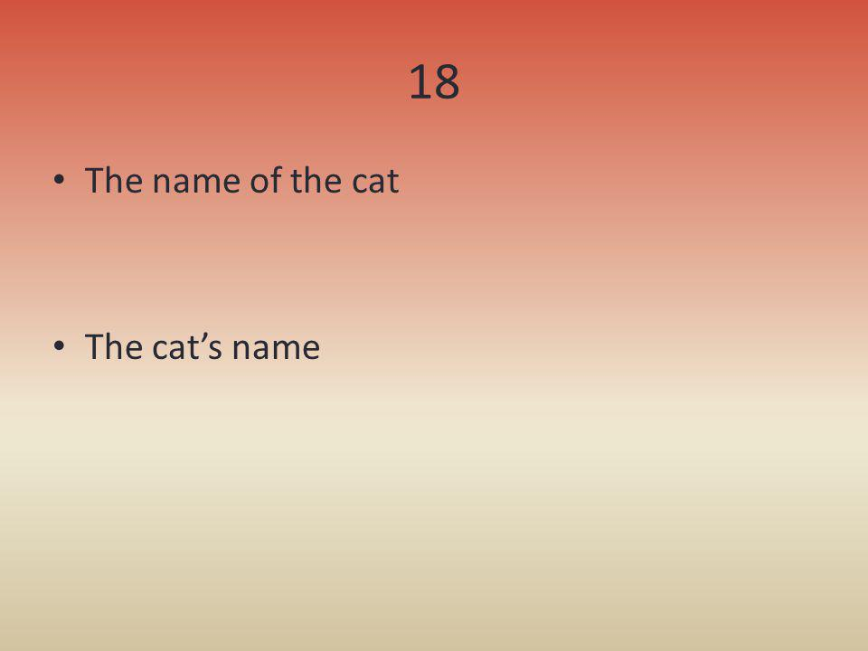18 The name of the cat The cats name