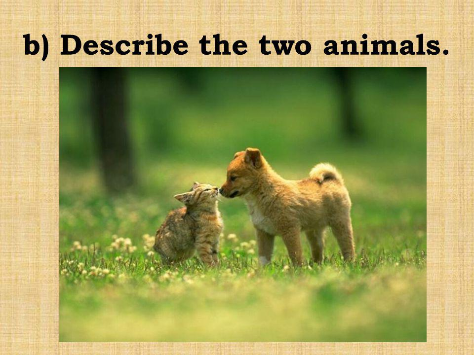 b) Describe the two animals.