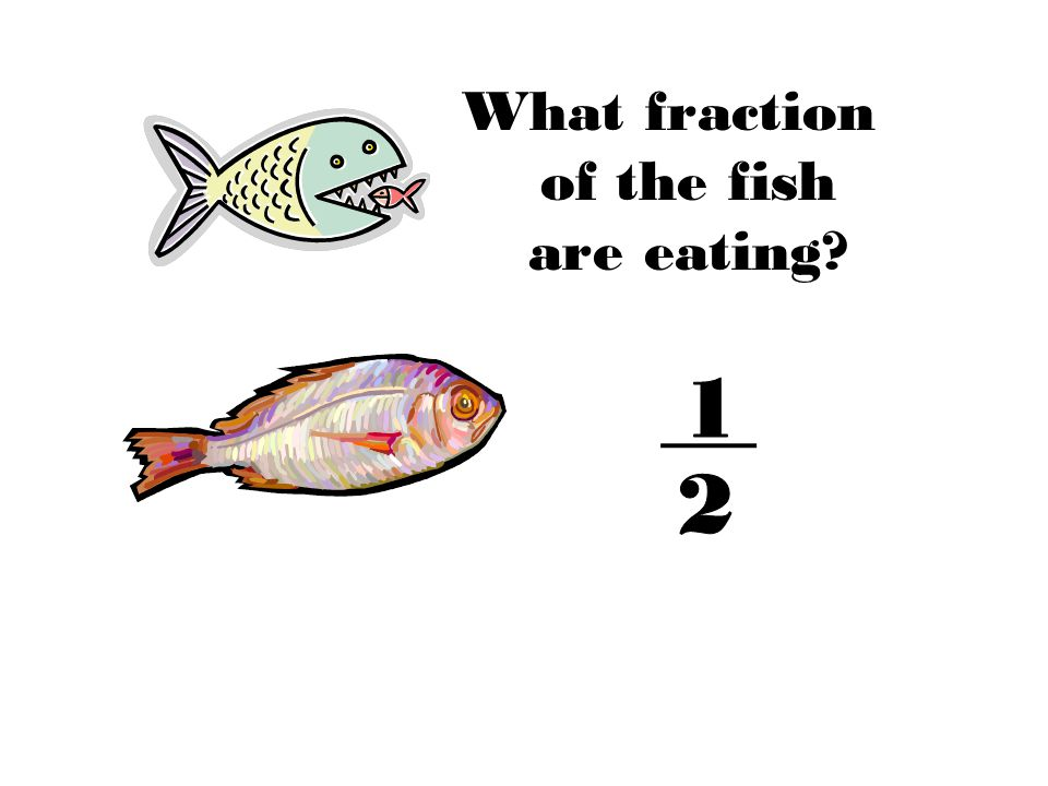 What fraction of the fish are eating?