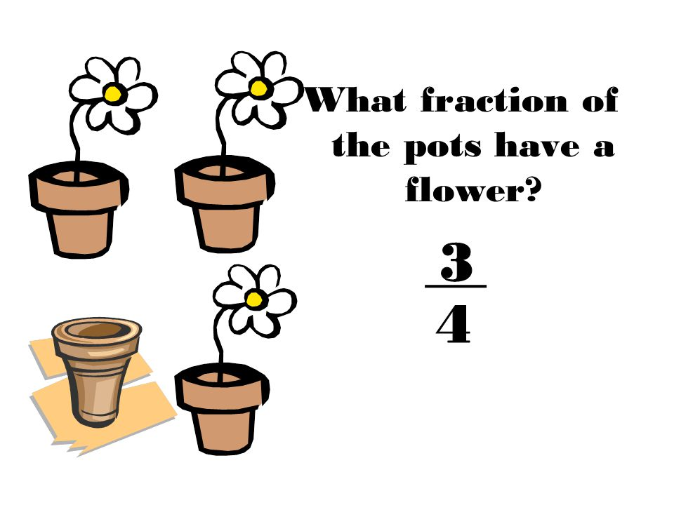 What fraction of the pots have a flower?