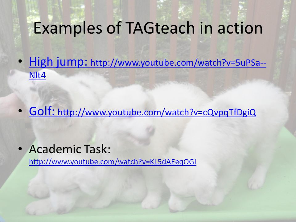 Examples of TAGteach in action High jump: http://www.youtube.com/watch v=5uPSa-- Nlt4 High jump: http://www.youtube.com/watch v=5uPSa-- Nlt4 Golf: http://www.youtube.com/watch v=cQvpqTfDgiQ Golf: http://www.youtube.com/watch v=cQvpqTfDgiQ Academic Task: http://www.youtube.com/watch v=KL5dAEeqOGI http://www.youtube.com/watch v=KL5dAEeqOGI