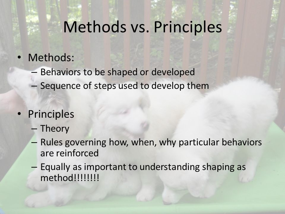 Methods vs.