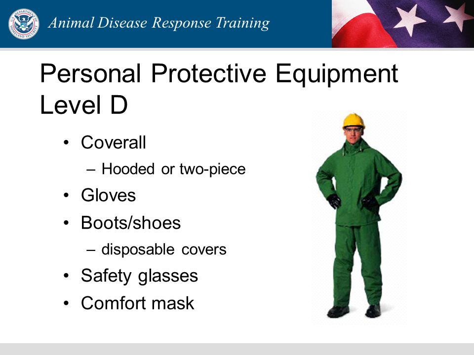 Animal Disease Response Training Personal Protective Equipment Level D Coverall –Hooded or two-piece Gloves Boots/shoes –disposable covers Safety glas