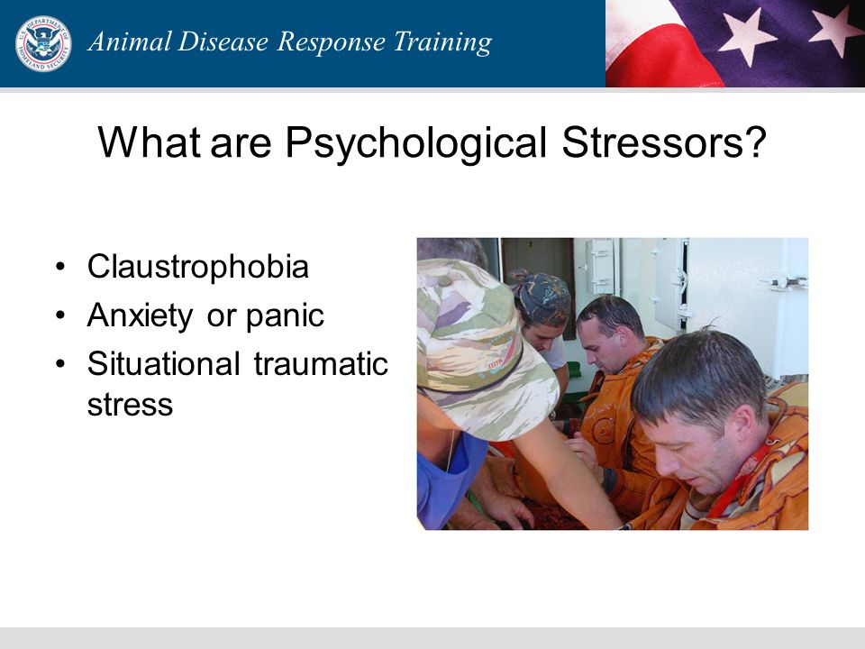 Animal Disease Response Training What are Psychological Stressors? Claustrophobia Anxiety or panic Situational traumatic stress