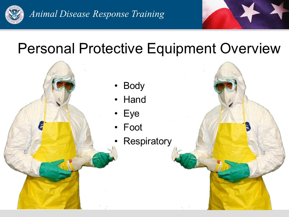 Animal Disease Response Training Personal Protective Equipment Overview Body Hand Eye Foot Respiratory