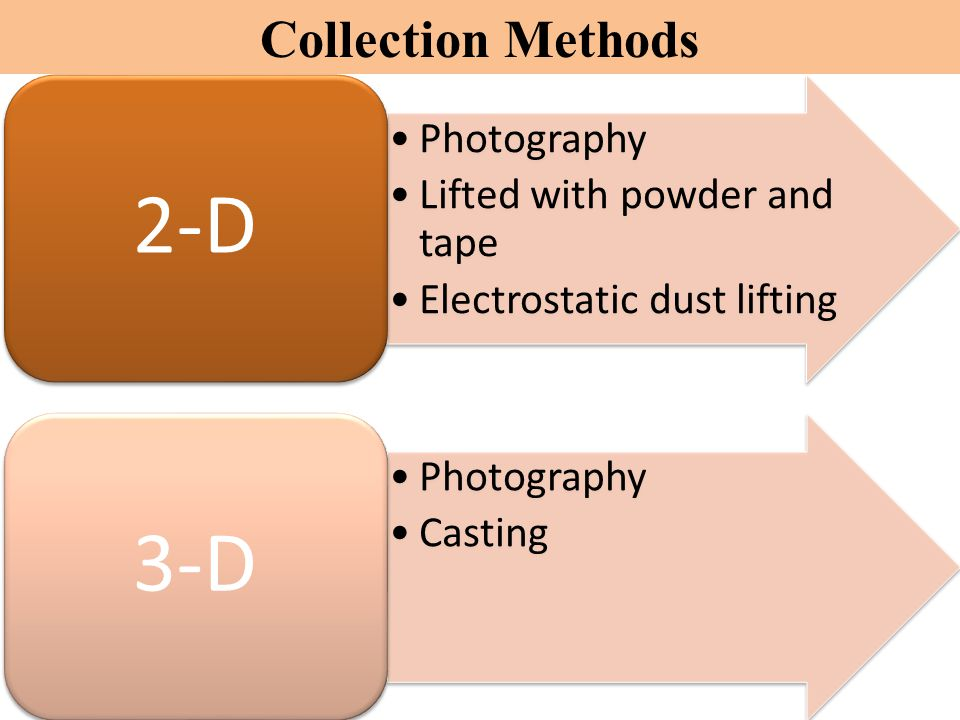 Collection Methods Photography Lifted with powder and tape Electrostatic dust lifting 2-D Photography Casting 3-D