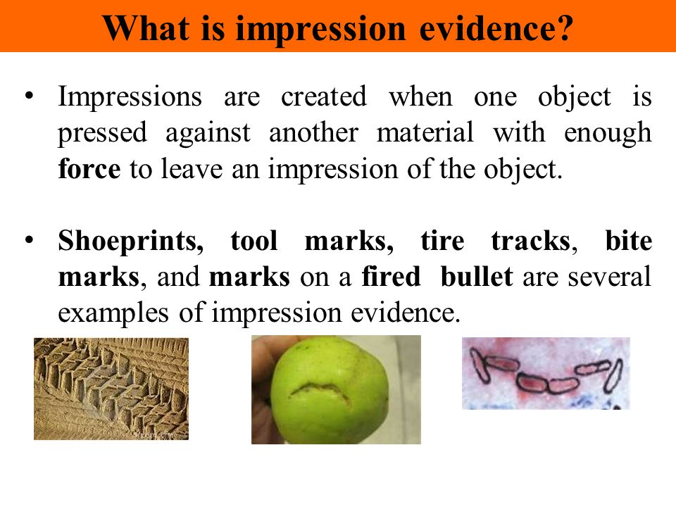 Impressions are created when one object is pressed against another material with enough force to leave an impression of the object. Shoeprints, tool m