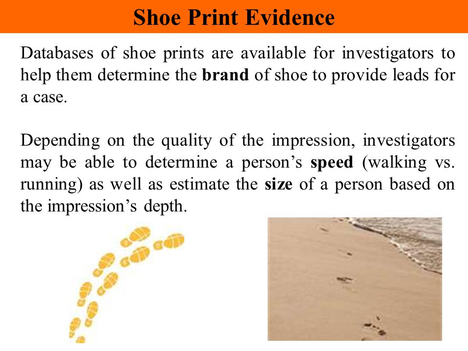 Databases of shoe prints are available for investigators to help them determine the brand of shoe to provide leads for a case. Depending on the qualit