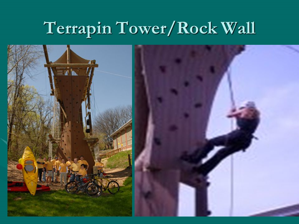 Terrapin Tower/Rock Wall