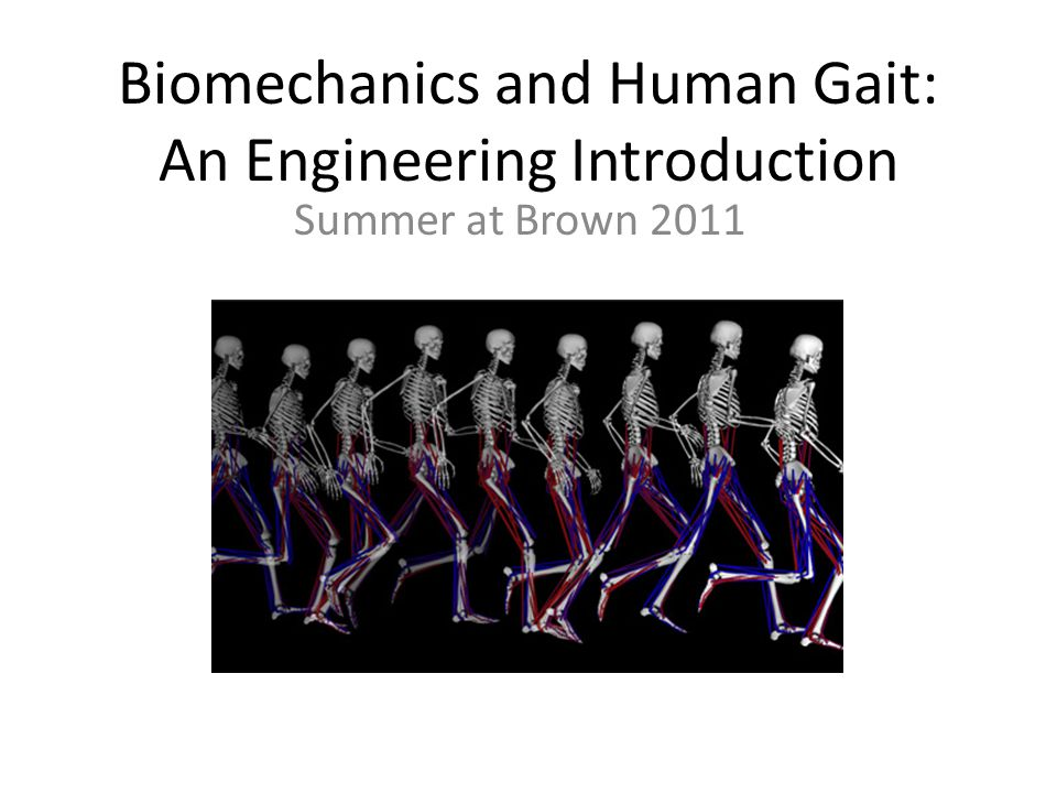 Biomechanics and Human Gait: An Engineering Introduction Summer at Brown 2011