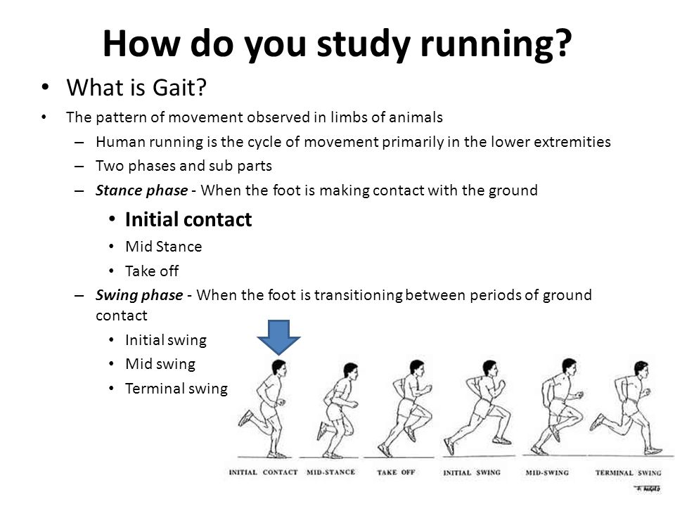 How do you study running. What is Gait.