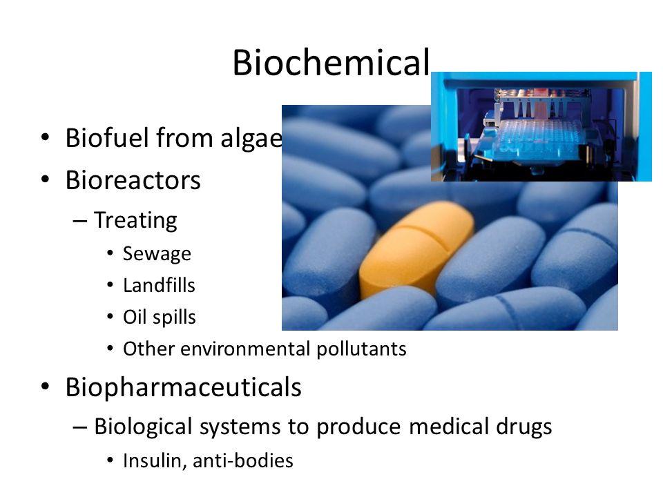 Biochemical Biofuel from algae Bioreactors – Treating Sewage Landfills Oil spills Other environmental pollutants Biopharmaceuticals – Biological syste