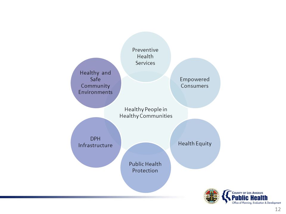 12 Healthy People in Healthy Communities Preventive Health Services Empowered Consumers Health Equity Public Health Protection DPH Infrastructure Healthy and Safe Community Environments