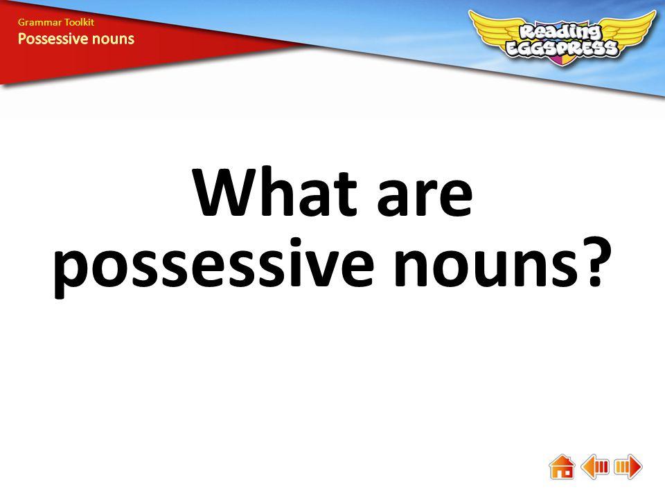 Sophia Grammar Toolkit A possessive noun names the owner of something.