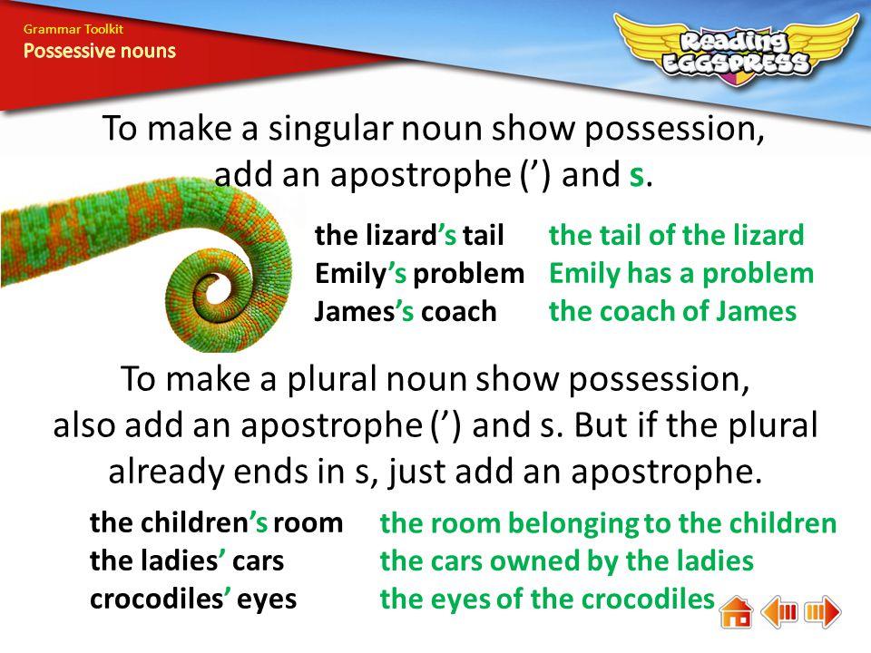 Grammar Toolkit Where should apostrophes go to make the nouns possessive.