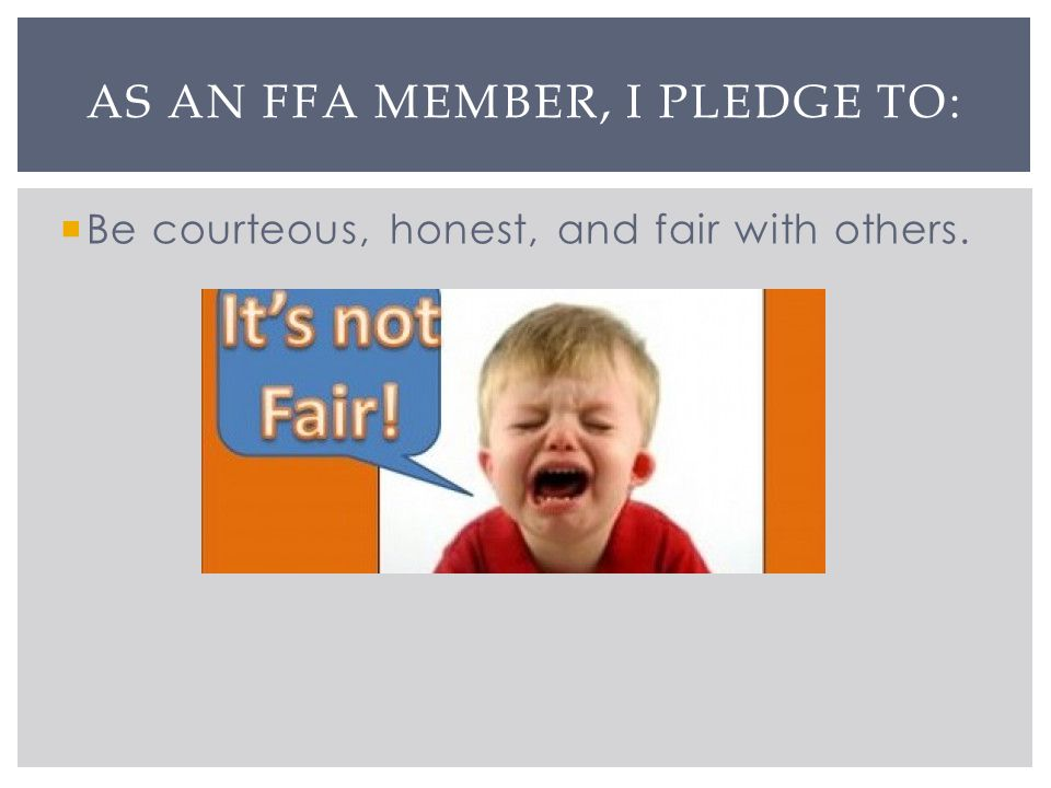 Be courteous, honest, and fair with others. AS AN FFA MEMBER, I PLEDGE TO:
