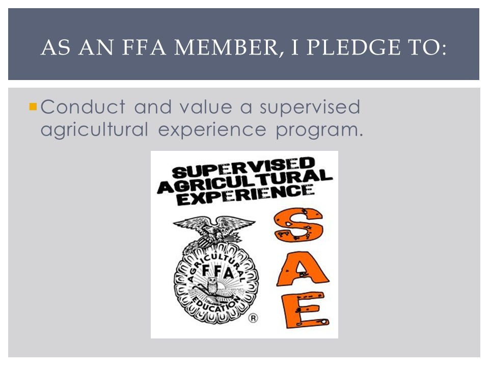 Conduct and value a supervised agricultural experience program. AS AN FFA MEMBER, I PLEDGE TO: