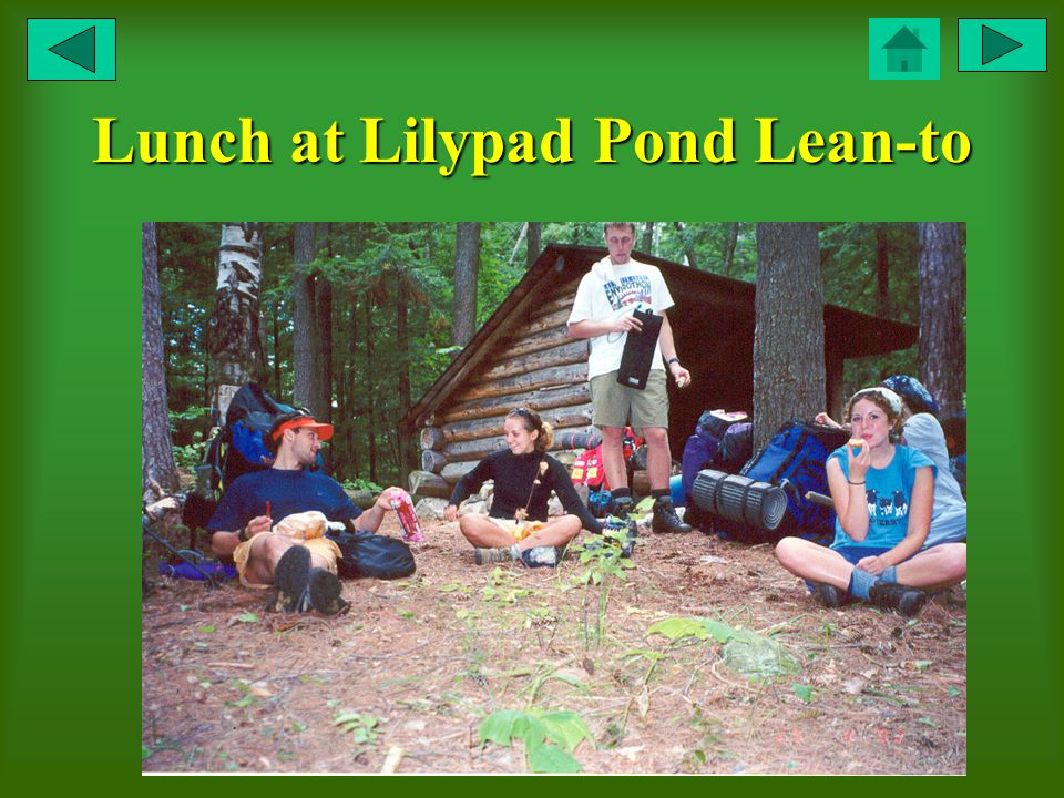 Lunch at Lilypad Pond Lean-to