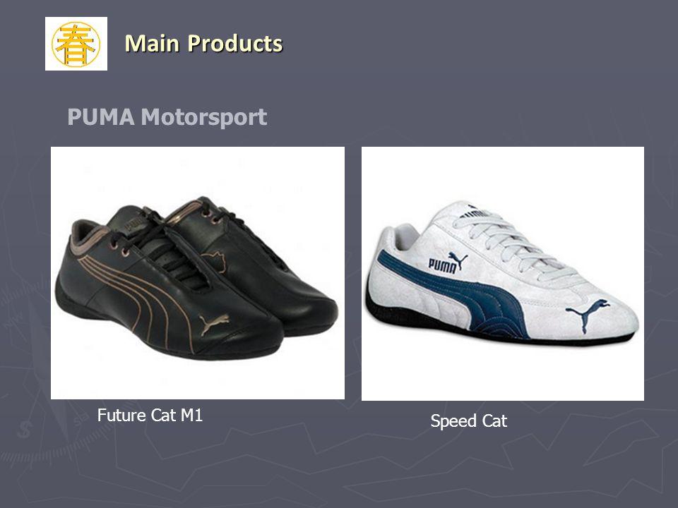 Future Cat M1 Speed Cat PUMA Motorsport Main Products