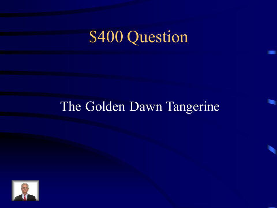 $300 Answer Locking away the reality of our lives