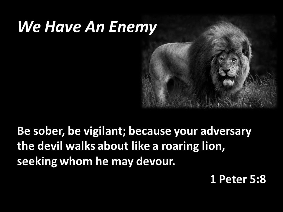 We Have An Enemy Be sober, be vigilant; because your adversary the devil walks about like a roaring lion, seeking whom he may devour.
