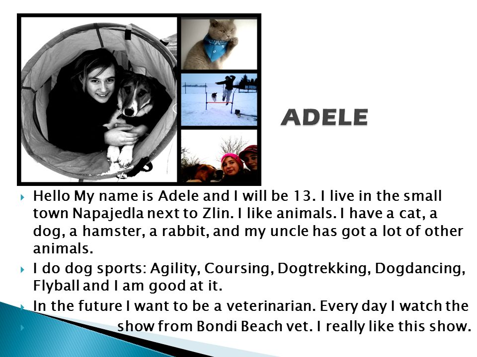 Hello My name is Adele and I will be 13. I live in the small town Napajedla next to Zlin.