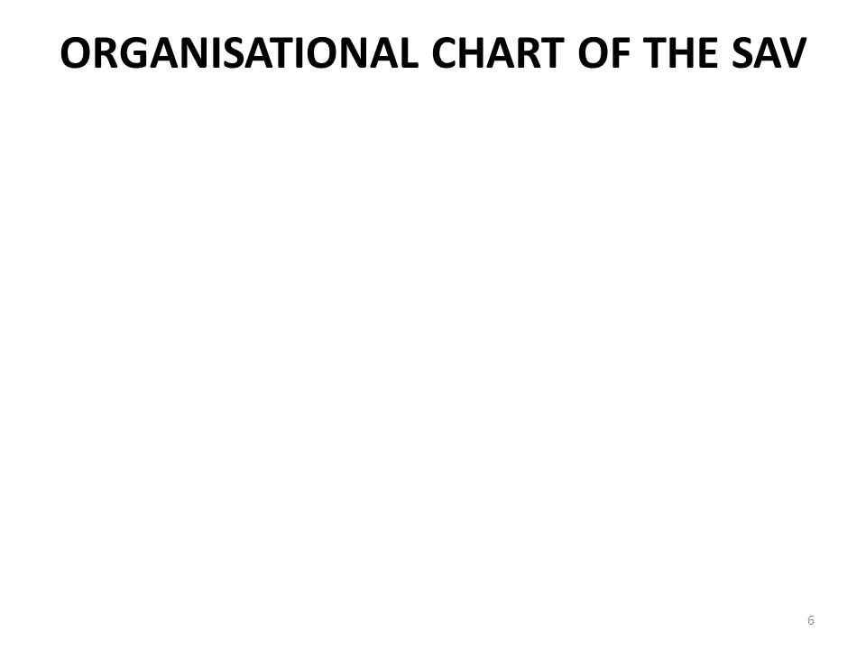ORGANISATIONAL CHART OF THE SAV 6