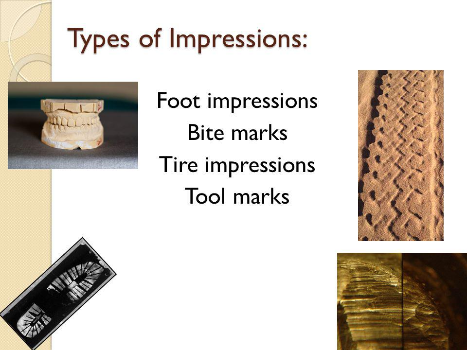 Types of Impressions: Foot impressions Bite marks Tire impressions Tool marks