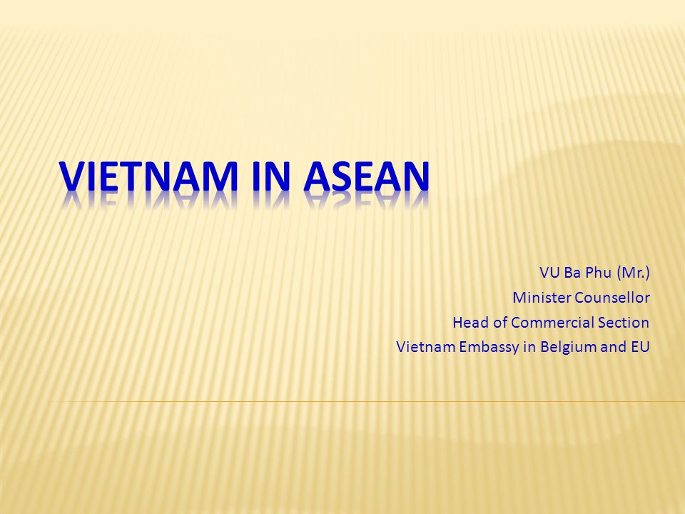 VU Ba Phu (Mr.) Minister Counsellor Head of Commercial Section Vietnam Embassy in Belgium and EU