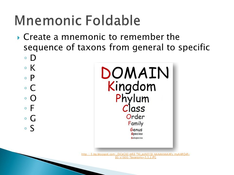 Create a mnemonic to remember the sequence of taxons from general to specific D K P C O F G S http://3.bp.blogspot.com/_DiCeGX2-bR8/TKI_zgN01QI/AAAAAA