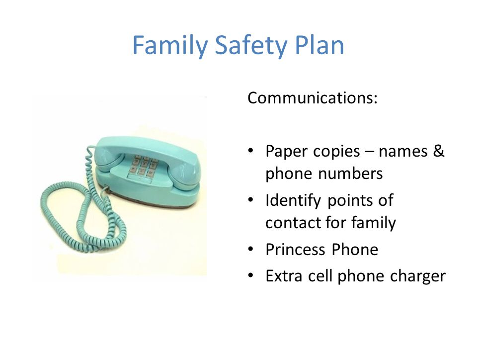 Family Safety Plan Communications: Paper copies – names & phone numbers Identify points of contact for family Princess Phone Extra cell phone charger
