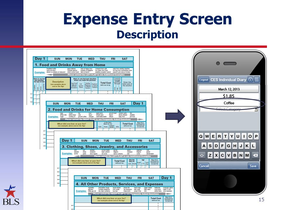 Expense Entry Screen Category 16