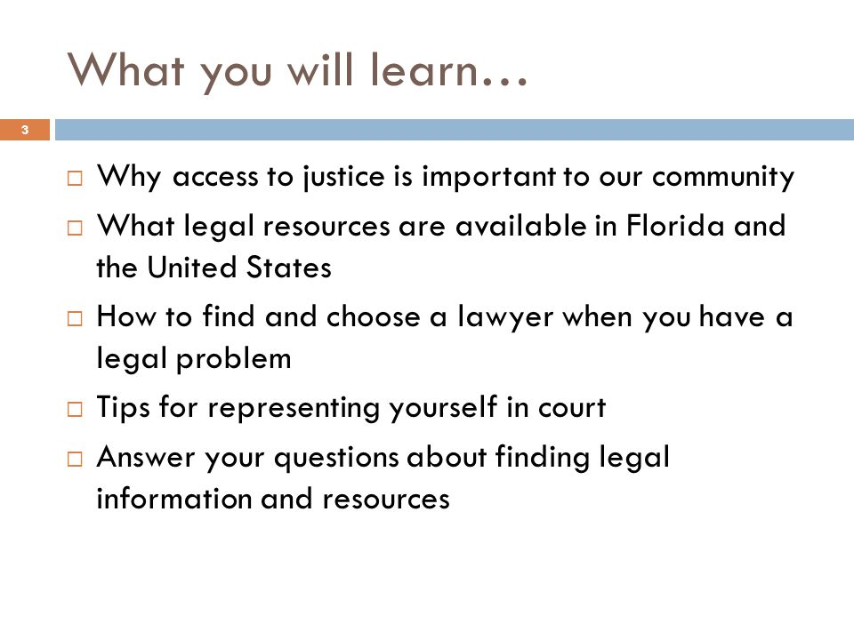 What you will learn… Why access to justice is important to our community What legal resources are available in Florida and the United States How to find and choose a lawyer when you have a legal problem Tips for representing yourself in court Answer your questions about finding legal information and resources 3