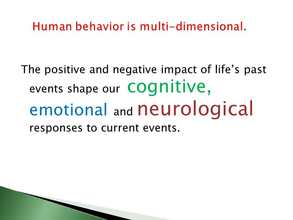 The positive and negative impact of lifes past events shape our cognitive, emotional and neurological responses to current events.