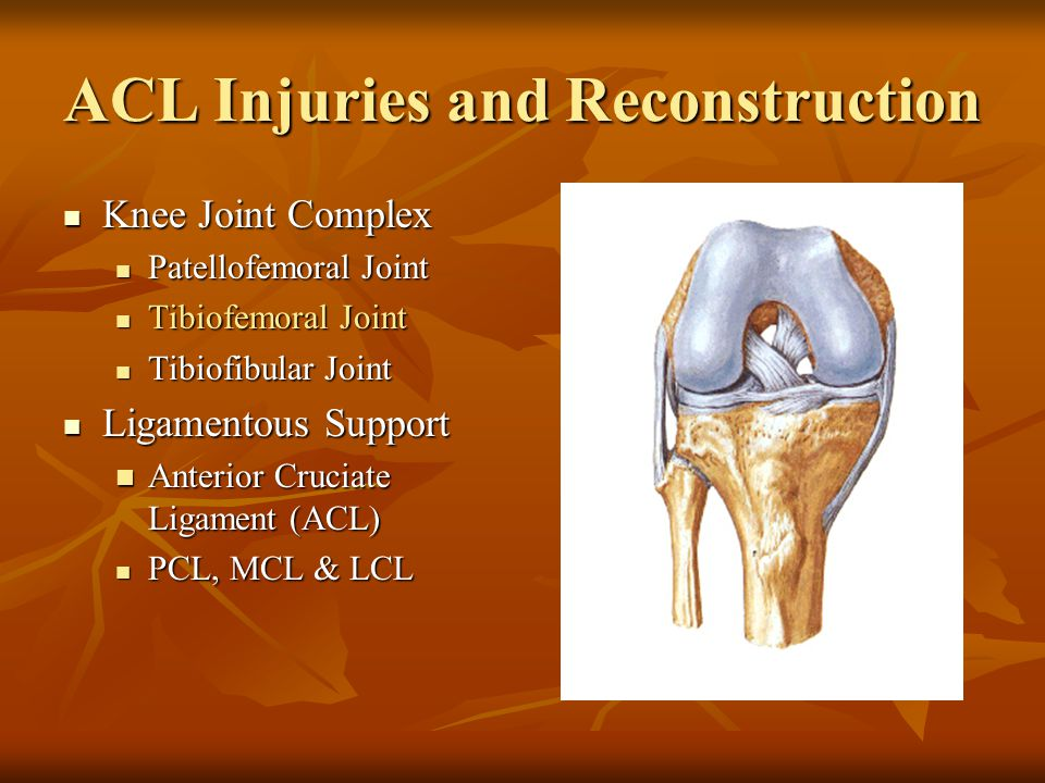 ACL Injuries and Reconstruction Knee Joint Complex Knee Joint Complex Patellofemoral Joint Patellofemoral Joint Tibiofemoral Joint Tibiofemoral Joint