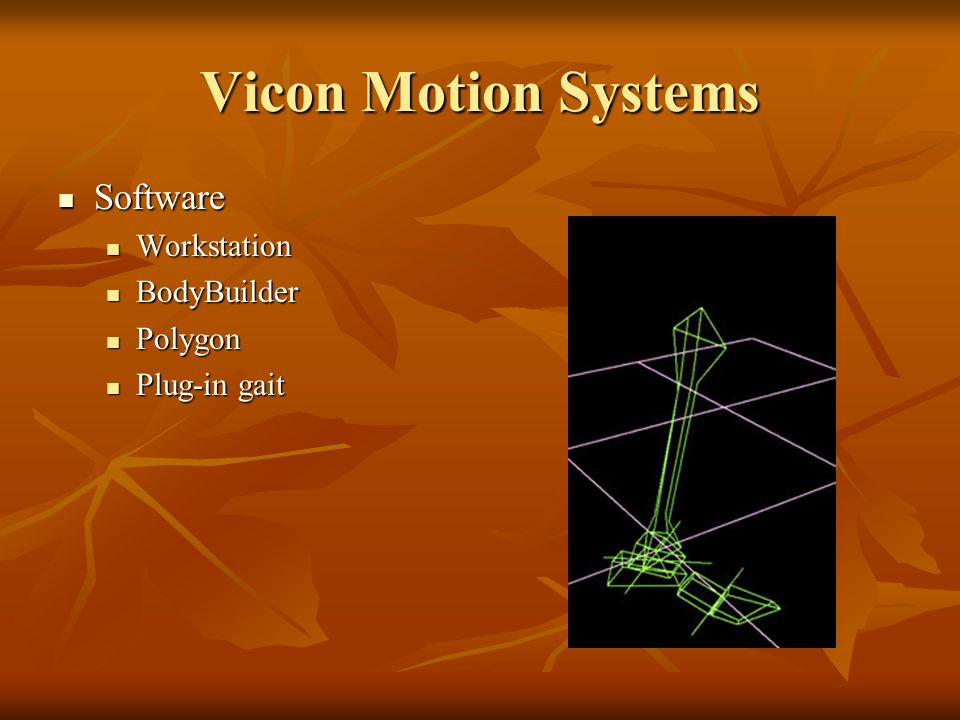 Vicon Motion Systems Software Software Workstation Workstation BodyBuilder BodyBuilder Polygon Polygon Plug-in gait Plug-in gait