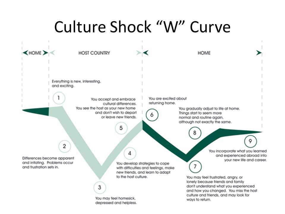 Culture Shock W Curve