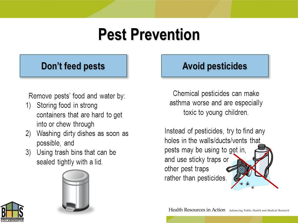 Pest Prevention Dont feed pests Avoid pesticides Chemical pesticides can make asthma worse and are especially toxic to young children. Instead of pest