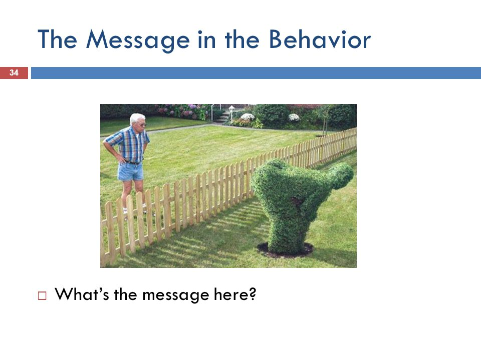 The Message in the Behavior 34 Whats the message here
