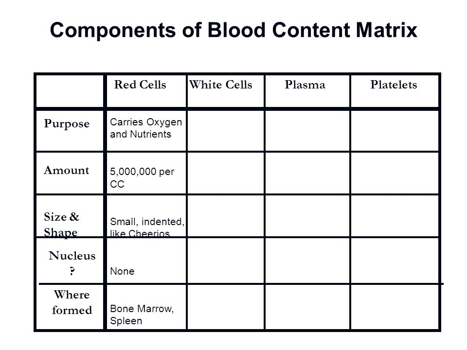 Components of Blood Content Matrix Red Cells White Cells Plasma Platelets Purpose Amount Size & Shape Nucleus ? Where formed Carries Oxygen and Nutrie