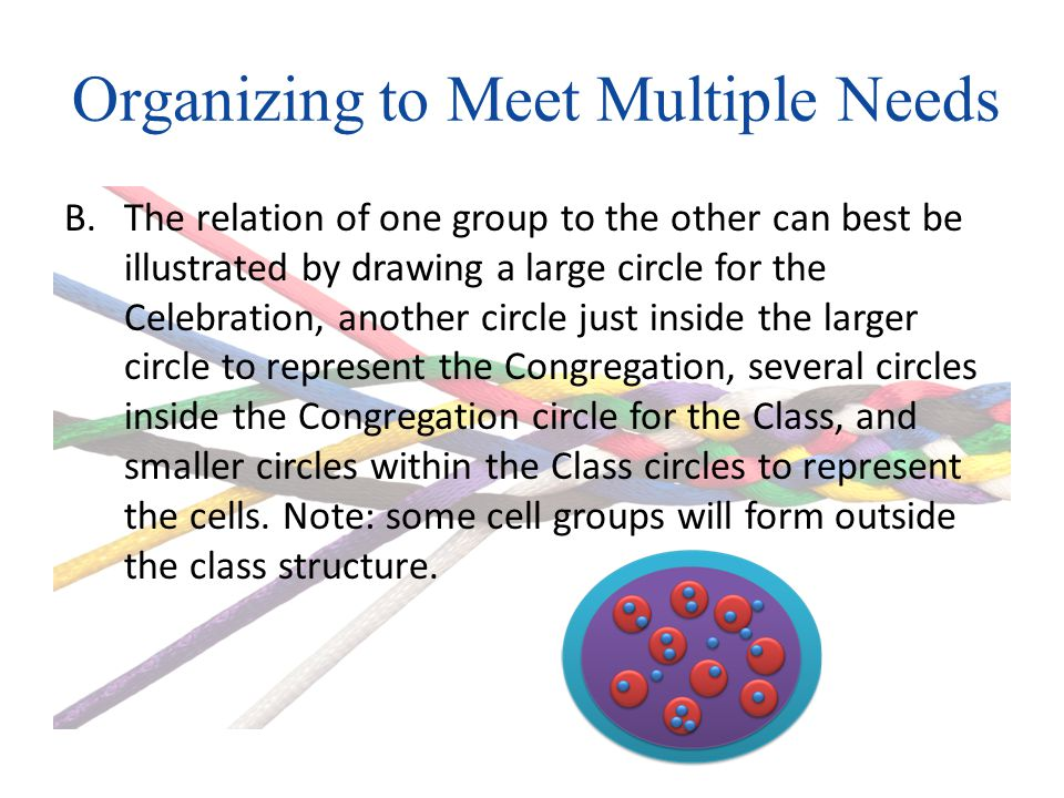 Organizing to Meet Multiple Needs B.The relation of one group to the other can best be illustrated by drawing a large circle for the Celebration, another circle just inside the larger circle to represent the Congregation, several circles inside the Congregation circle for the Class, and smaller circles within the Class circles to represent the cells.
