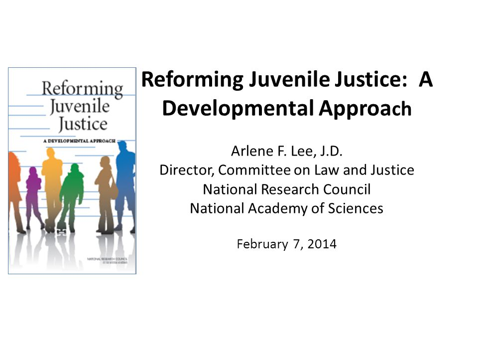 Reforming Juvenile Justice: A Developmental Approa ch Arlene F.