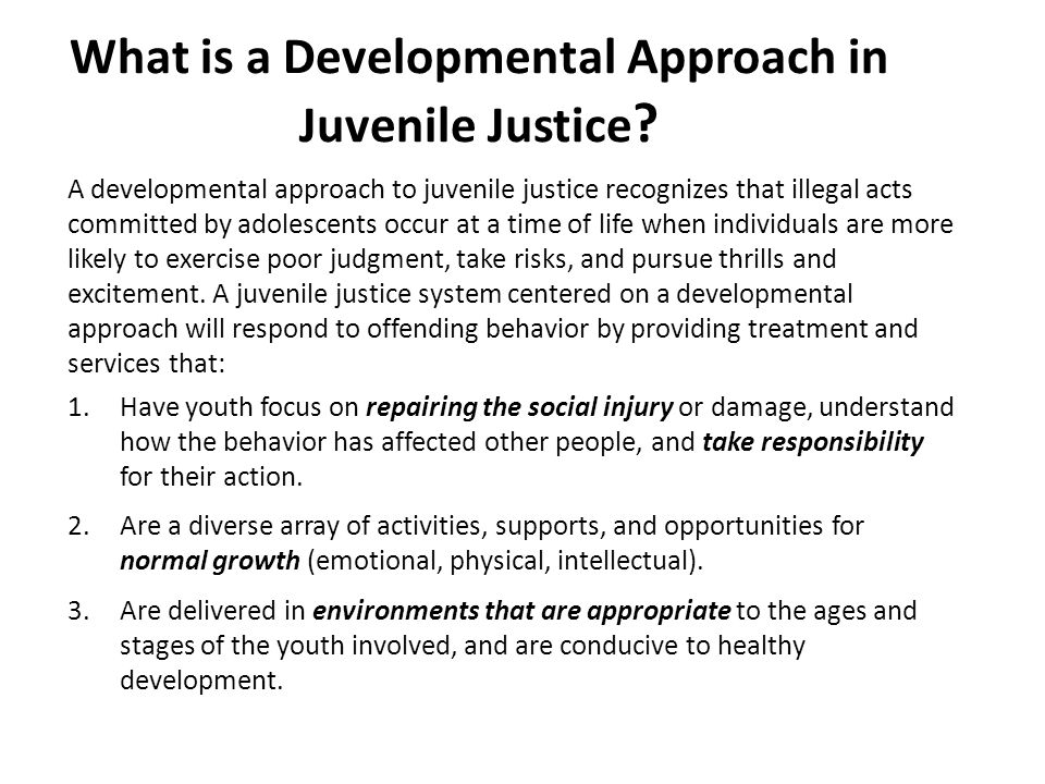 What is a Developmental Approach in Juvenile Justice .