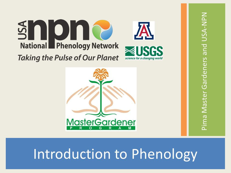 Intro to Phenology Research needs Long-term, accessible data set Interactive tools for visualization Plant and animal species data for multiple locations Focal species Results Better understanding of changes Analysis of impacts Communication